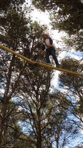 arborismo en andalucía